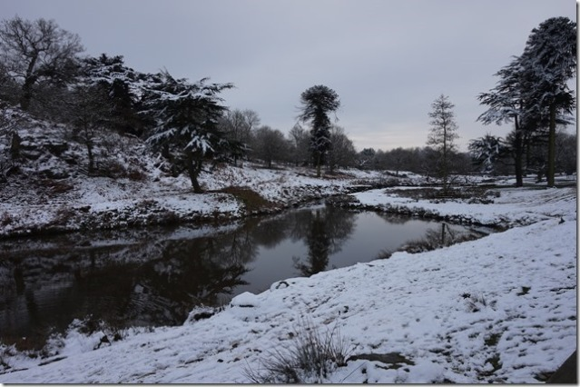 Bradgate Park (Photo: Sharon Bunting)