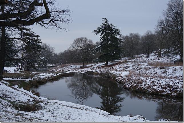 Bradgate Park (photo: Sharon Bunting)
