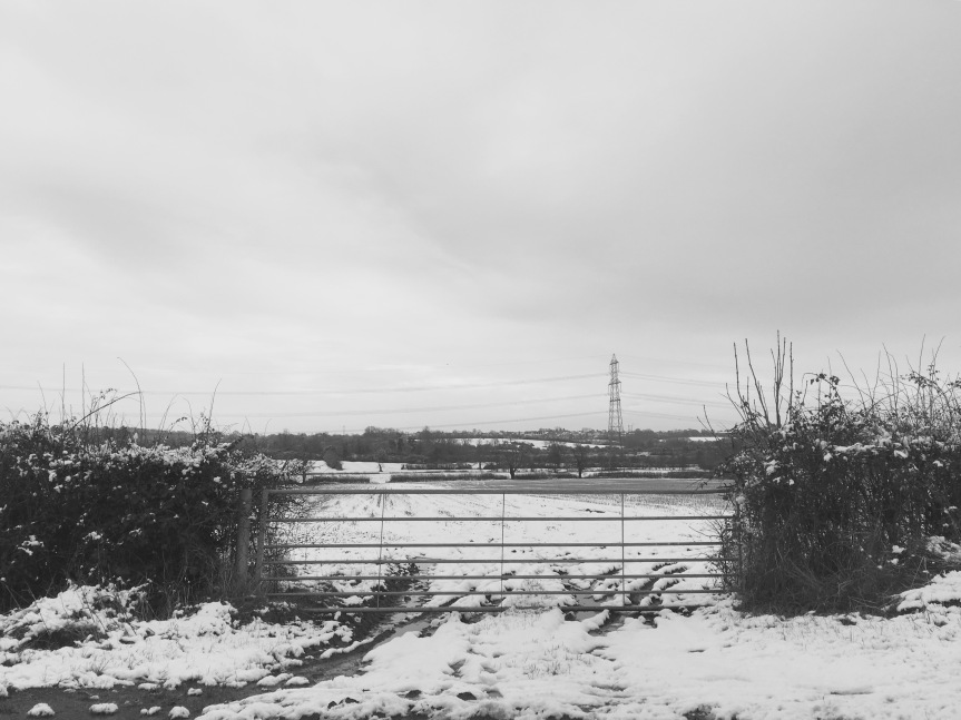 Groby rd, looking over fields towards Glenfield (Photo: Andrew Nickolls)