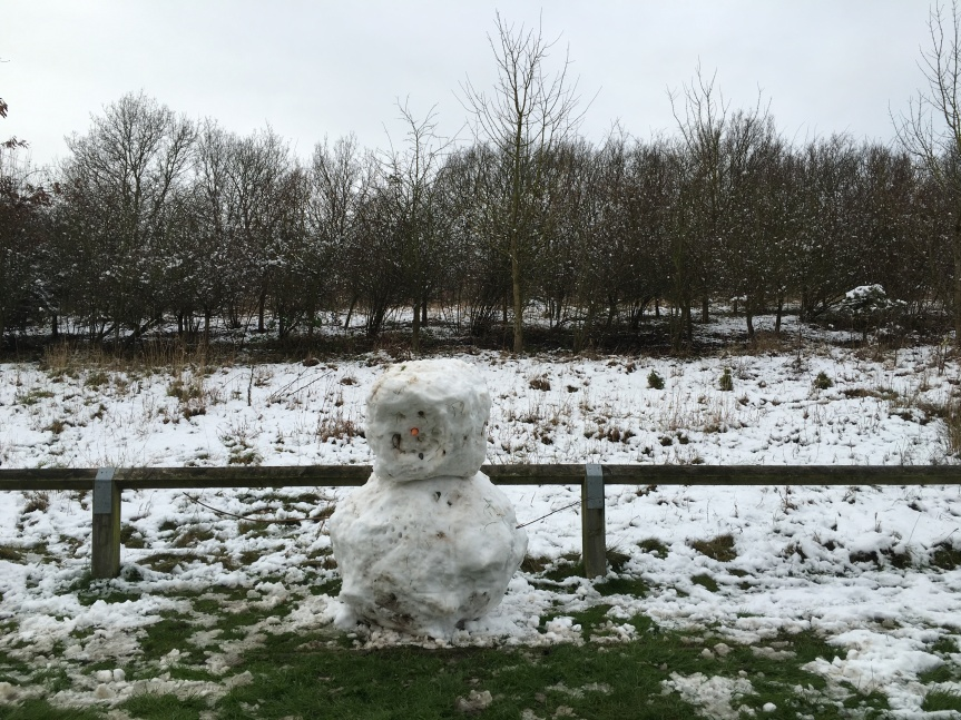Snowman spotted! Long Close, Anstey