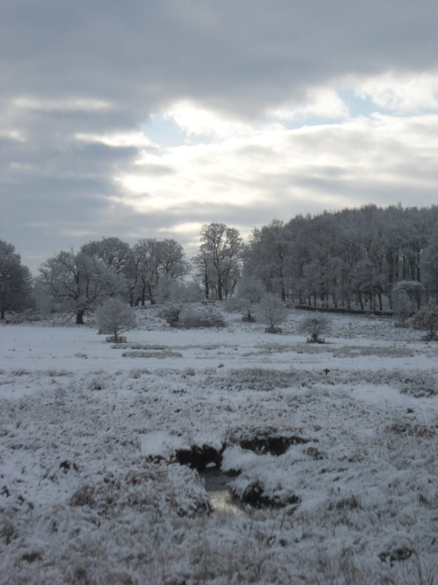 January Snow in Anstey, Bradgate and Groby
