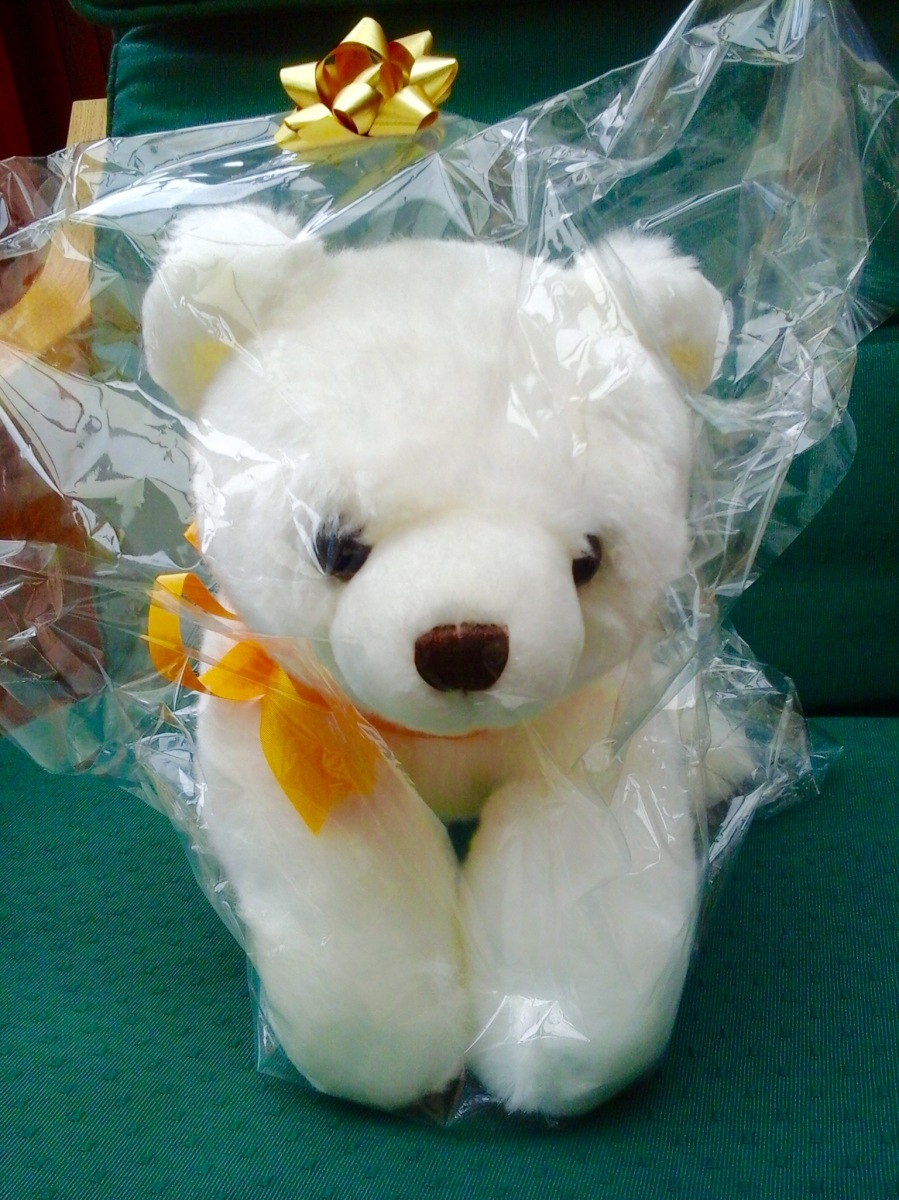 Competition Winners: Guess the name of the Bear!