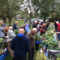 Our Anstey Annual Plant Sale raises over £1k for Library